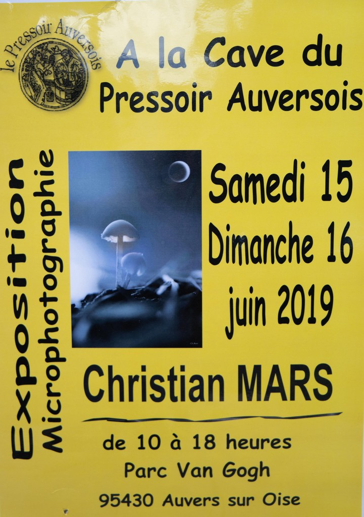 Pressoir d'Auvers sur Oise 15 et 16 juin 2019