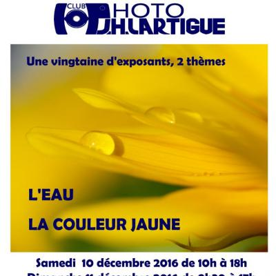 Expo J.h Lartigue de l'Isle Adam 2016