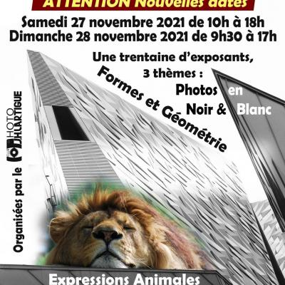 Mes Expositions