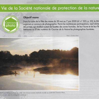 Concours SNPN, 1e Brume sur l'étang au lever du soleil