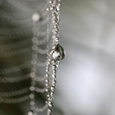 De la perle à la toile