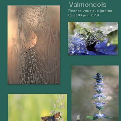 RV des jardins Valmondois 2018